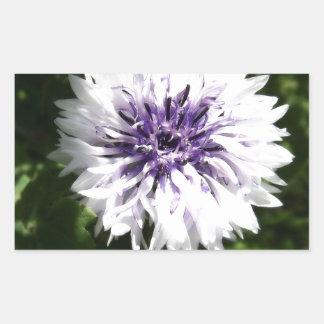 cornflower rectangular sticker