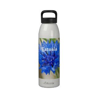 Cornflower Drinking Bottle