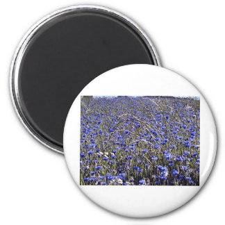 cornflowers 2 inch round magnet