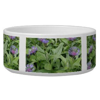 Cornflowers Dog Bowl
