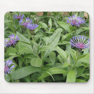 Cornflowers Mousepad