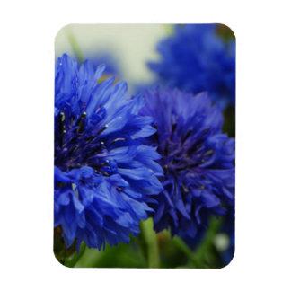 Cornflowers Rectangular Photo Magnet