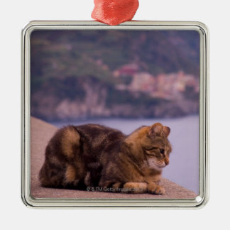 Corniglia, Cinque Terre, Italy Christmas Ornament