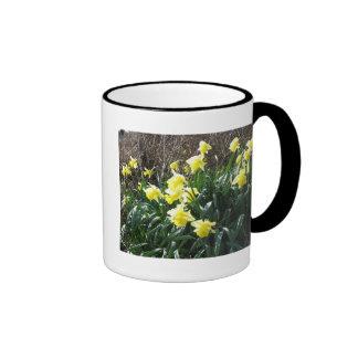 Cornish Daffodils (5867) Ringer Mug Black 11oz