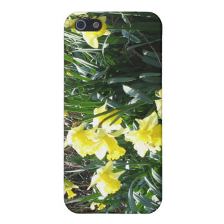 Cornish Daffodils Speck iPhone4 Case Cover For iPhone 5/5S