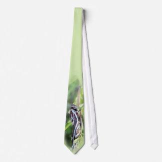 Corny Tie, by JC Findley Tie