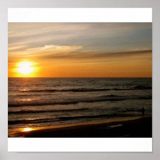 Corolla Morning Sun Posters