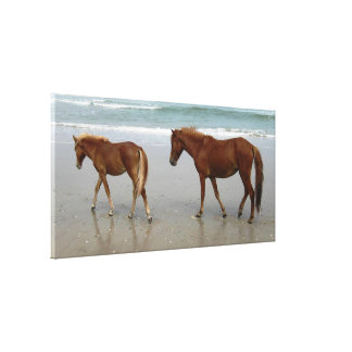 Corolla s Horses Stretched Canvas Prints