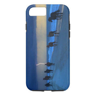 Corolla Wild Horses Lightning IPhone 7 Case