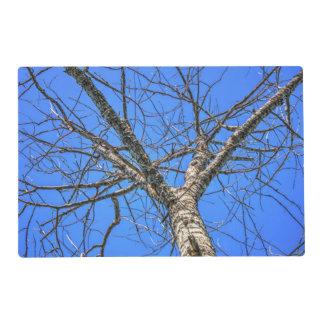 Corona del árbol de álamo tapete individual