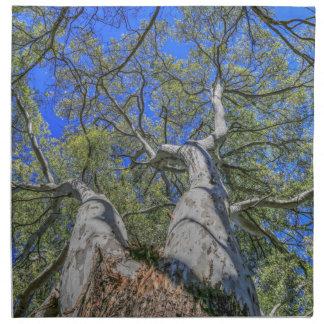 Corona del árbol servilleta de papel