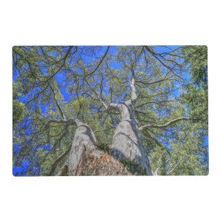 Corona del árbol tapete individual