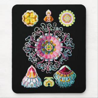 Corona o medusas del casco alfombrilla de ratón