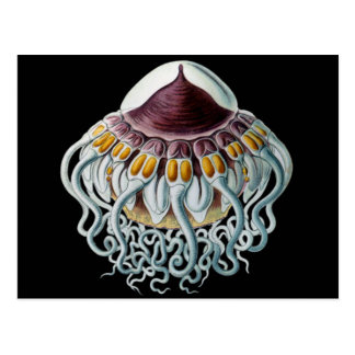 Corona o medusas del casco postal