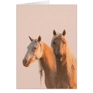 Corona y Cheyenne en la tarjeta de felicitación de