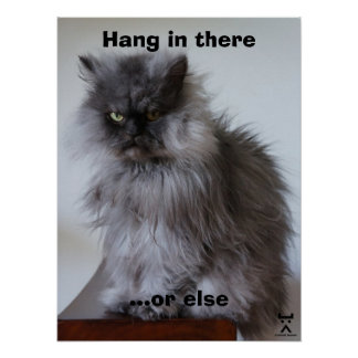 Coronel Meow Hang In There Poster