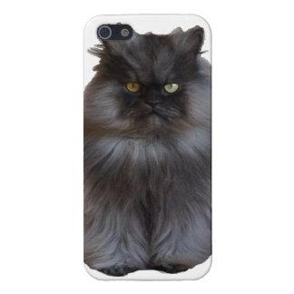Coronel Meow Phone Case iPhone 5 Funda