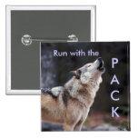 Corra con el paquete pins