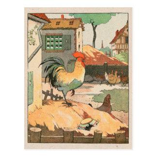 Corral del gallo tarjetas postales