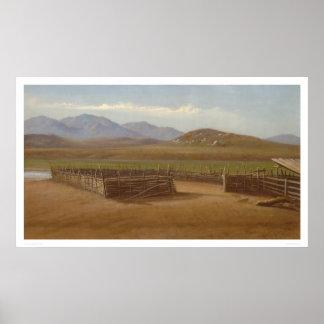 Corral, Rancho Santa Margarita (1162) Posters