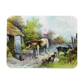 Corral rústico con el caballo y las cabras imanes de vinilo