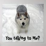 ¿Córrale a medio galope que habla conmigo? Poster