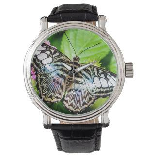 Correa de cuero de las podadoras del vintage azul reloj