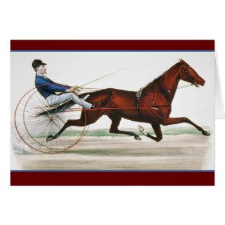 Corredor de caballo de arnés - bella arte del vint felicitaciones