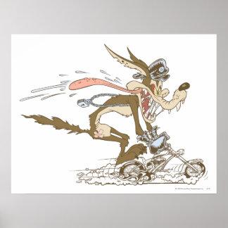 Corredor de ciclo de E. Coyote del Wile Póster
