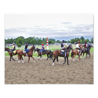 Corredores del césped del asilo del caballo fotografía