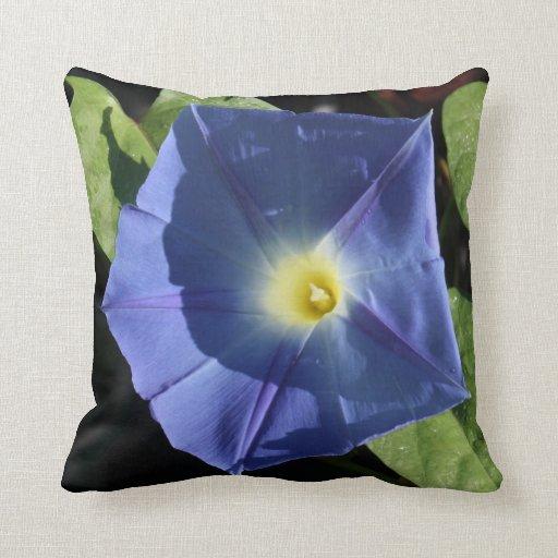 Correhuela azul divina almohadas