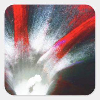Correhuela en rojo y negro pegatina cuadrada