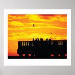 Correhuela: Salidas del sol #112410b de la Florida Poster
