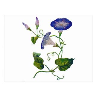 Correhuelas azules bordadas postal