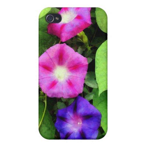 Correhuelas rosadas y púrpuras iPhone 4 cobertura