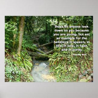 Corriente de la selva tropical llamada por la impr póster