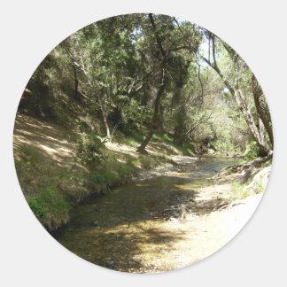 Corriente del agua pegatina redonda