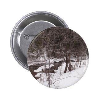 Corriente del arbolado en invierno pins