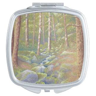 Corriente del arbolado, espejo máximo del acuerdo espejos compactos