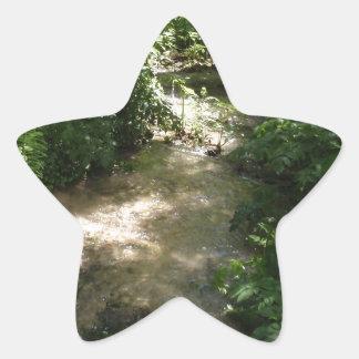Corriente del arbolado pegatina en forma de estrella