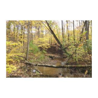 Corriente del bosque del otoño impresión en lienzo