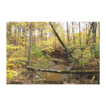 Corriente del bosque del otoño impresiones en lienzo estiradas