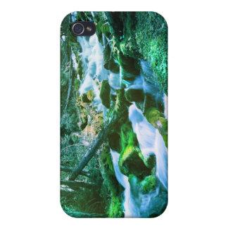 Corriente del bosque iPhone 4 protector