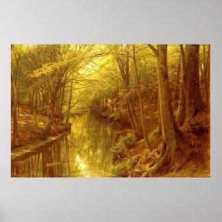 Corriente del bosque impresiones
