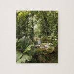 corriente en la selva tropical, Dominica Rompecabeza
