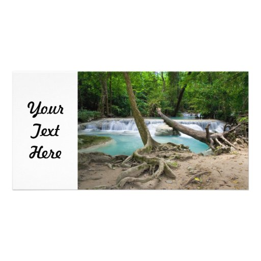 Corriente en la selva tropical tarjetas fotograficas