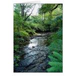 """""""Corriente en las maderas de Northumberland"""" (6) Tarjeta"""