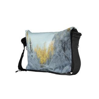 Corriente hivernal bolsas de mensajería
