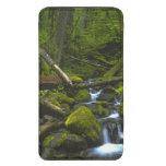 Corriente templada de la selva tropical en el río  bolsillo para móvil