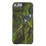 Corriente templada de la selva tropical en el río funda para iPhone 6 barely there